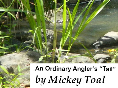 "An ordinary Anglers ""Tail"" by Mickey Toal"